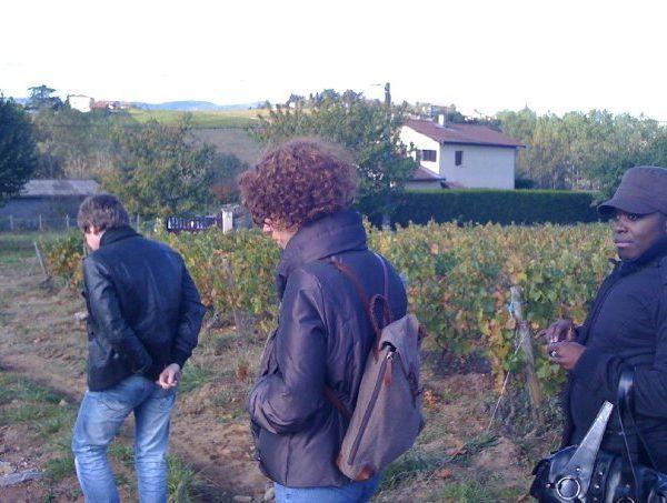 Une Nenette du vin dans le vignoble 18